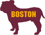 Boston Bulldogs