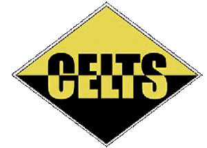 Cincinnati Celts